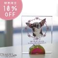 【今なら10%OFF】ペット位牌 フレームクリスタル 可愛い カラー 位牌 送料無料