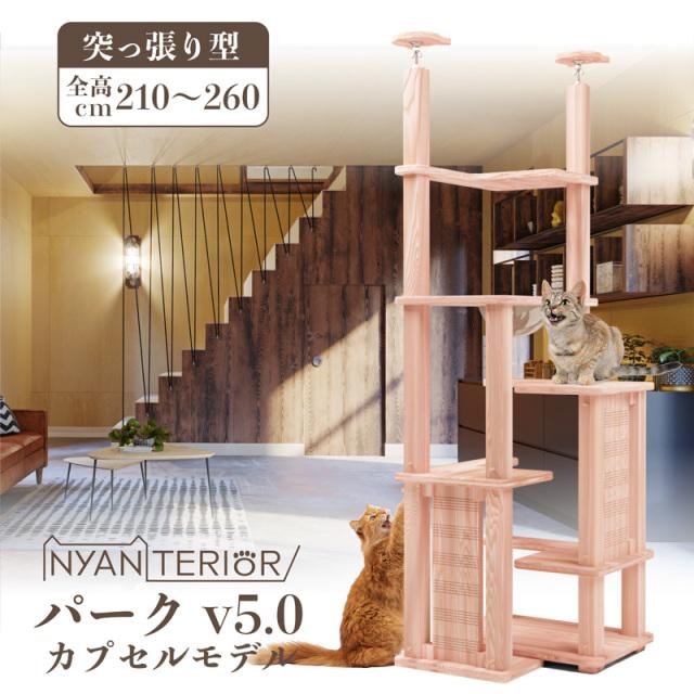 【3/31まで送料無料】ぷち5段BOX