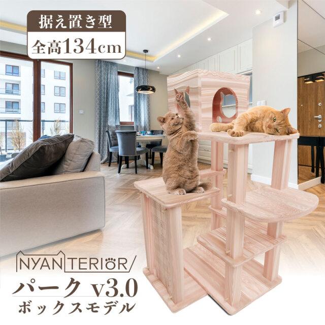 プレミアム3段BOX 2020ver