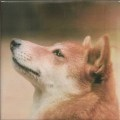 ペットのお墓写真陶板フルカラー150