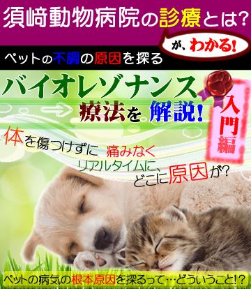 原因療法 入門編 with バイオレゾナンス法