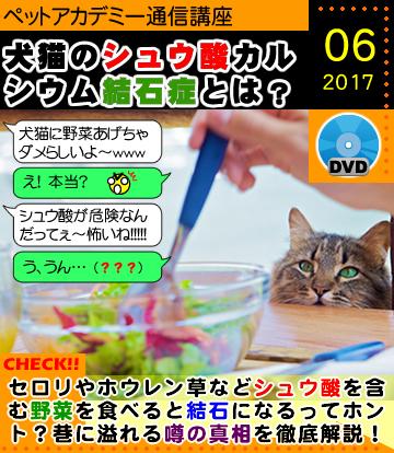 ペットアカデミー通信講座2017年6月号「野菜を食べるとシュウ酸カルシウム尿結石症になれる?」