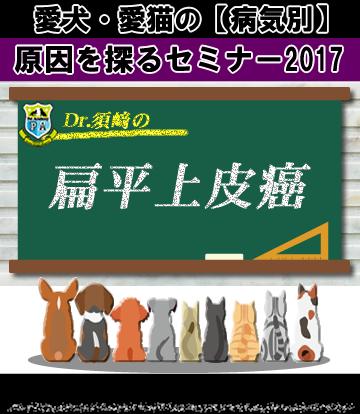 愛犬・愛猫の扁平上皮癌の原因を探るセミナー2017
