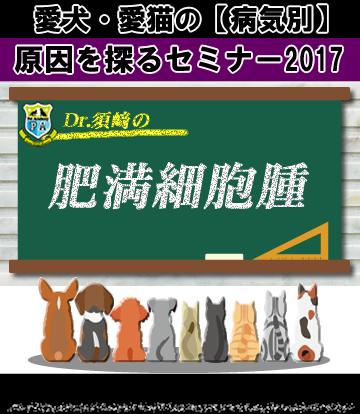 愛犬・愛猫の肥満細胞腫の原因を探るセミナー2017