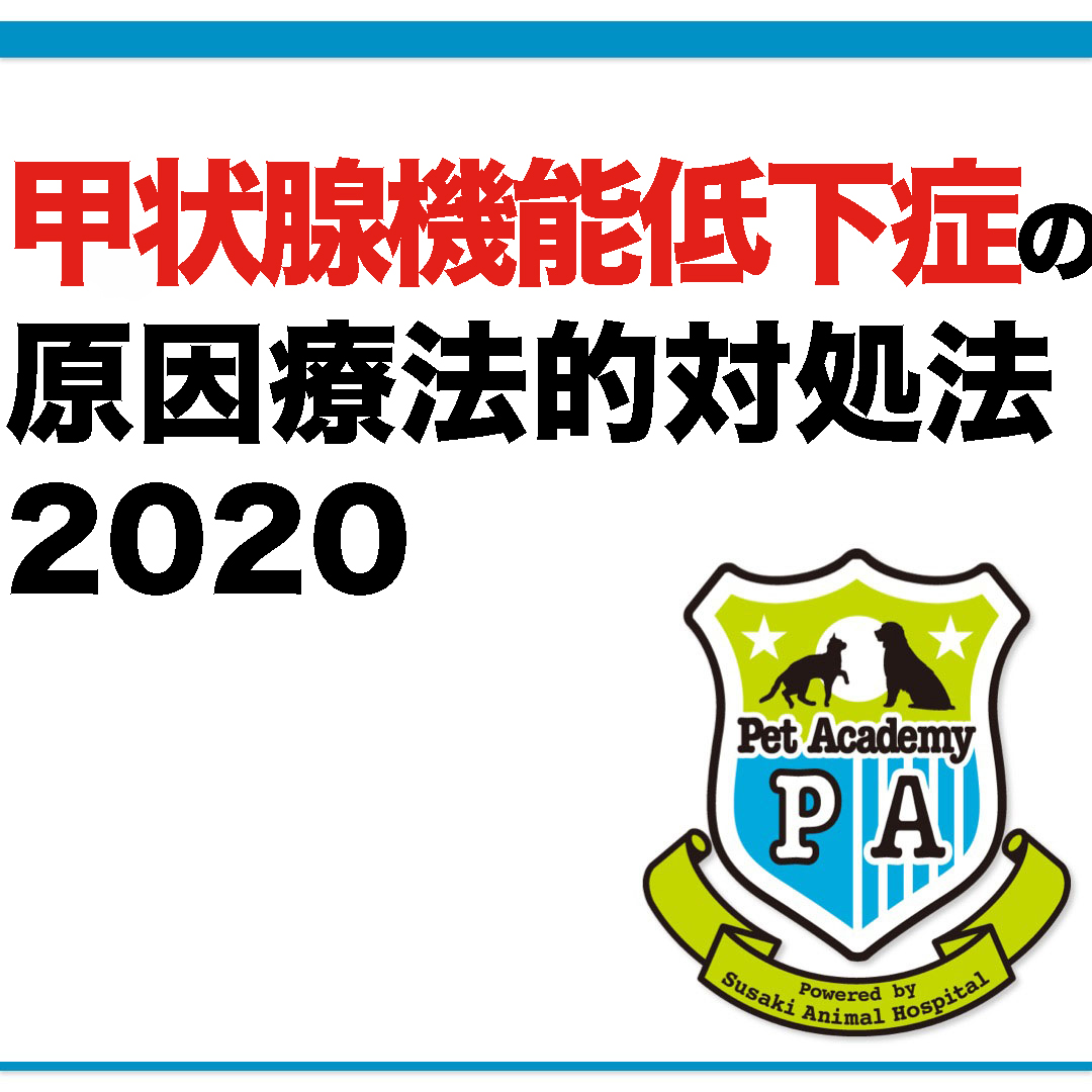 愛犬・愛猫の甲状腺機能低下症2020