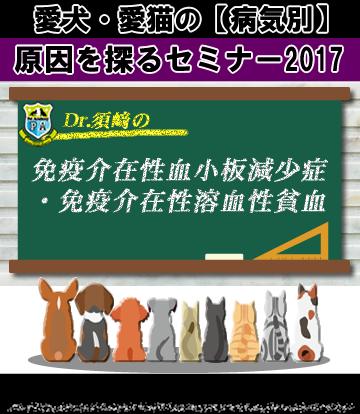 愛犬・愛猫の免疫介在性血小板減少症・免疫介在性溶血性貧血の原因を探るセミナー2017