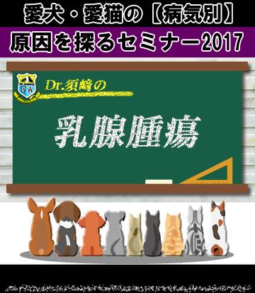 愛犬・愛猫の乳腺腫瘍の原因を探るセミナー2017