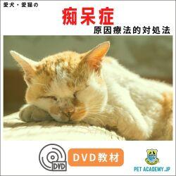 愛犬・愛猫の痴呆症セミナー2020