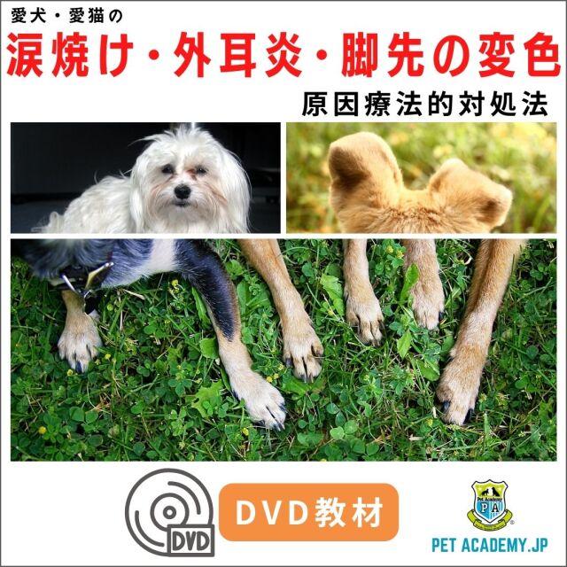 【動画配信】 愛犬・愛猫の涙焼け・外耳炎・脚先の変色2020