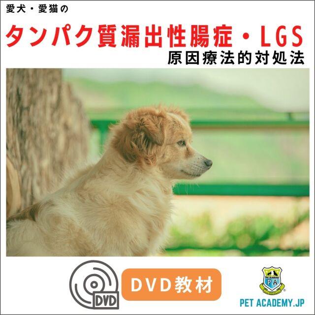 【動画配信】 愛犬・愛猫のタンパク質漏出性腸症・LGS2020