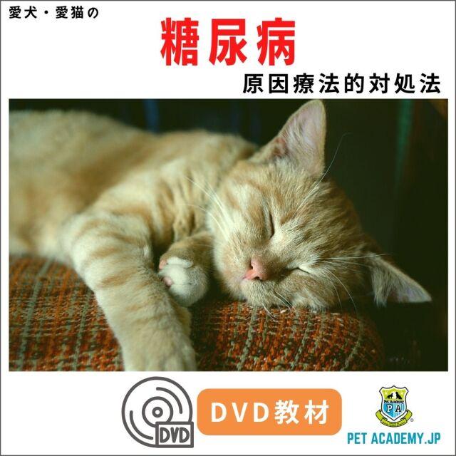 【動画配信】 愛犬・愛猫の糖尿病セミナー2020