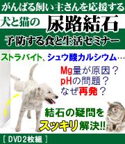 がんばる飼い主さんを応援する犬猫の尿路結石を予防する食と生活セミナー2014