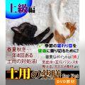 犬猫の薬膳 土用 2017 上級編 - 脾を健やかにする薬膳 -