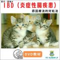 IBD(炎症性腸疾患)セミナー2020