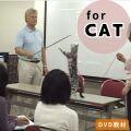 Errorless!~何歳からでも始められる失敗しない愛猫のトレーニング