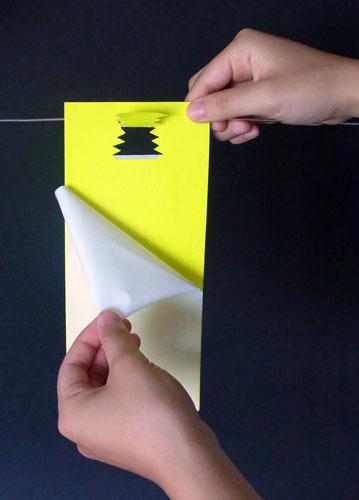 New虫バンバン設置法