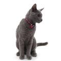 【猫用首輪】FLCアースチェックカラー 首囲18-28cm