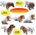 【留具あり 新モデル】【犬用腹巻】ボディウォーマー SSサイズ