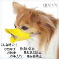 【犬用】【口輪】【しつけ】【お出かけ】quack クアック L