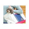 【新商品】iDogセミハードボトムトートキャリーバッグ【犬キャリーバッグトートタイプ】