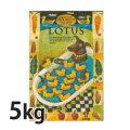 ロータス グレインフリー ダックレシピ 成犬用 5kg 小粒 ペット用品 ペットフード 犬用品 ドッグフード ドライフード 穀物フリー