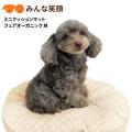 【新商品】ミニクッションマットフェアオーガニックM【犬猫用】【洗替取替】【抗菌・防臭加工】