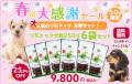 【送料無料】【CKC推奨商品】リモドッグ大粒250g 6袋セット