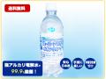【送料無料】スーパーアルカリイオン水1L【ウィルス対策】