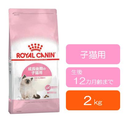 ■ロイヤルカナン キトン (生後12カ月齢まで) 2kg