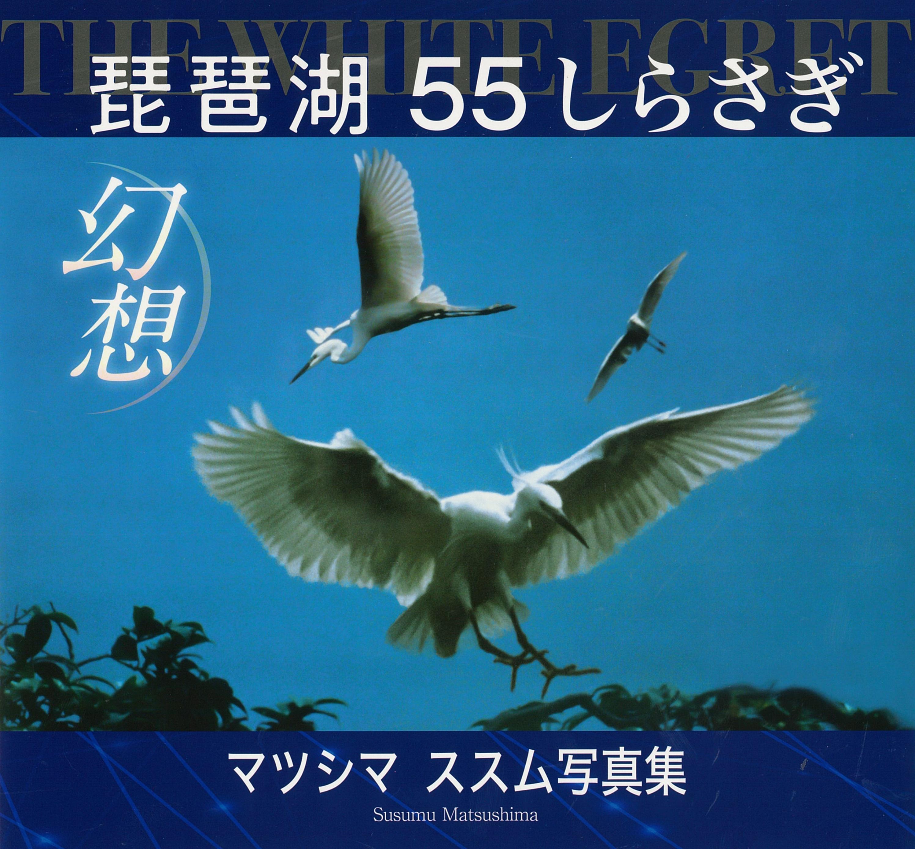 琵琶湖幻想
