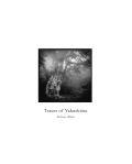 Traces of Yakushima