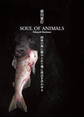 SOUL OF ANIMALS