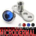 マイクロダーマルアンカー