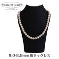 国産あこや本真珠 日本製 パール 8.0-8.5mm珠 ネックレス