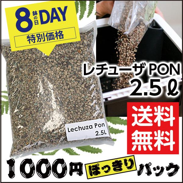 8の日セール限定【LECHUZA】レチューザ・ポン(クレイ)2.5リットル・1000円ぽっきりセット