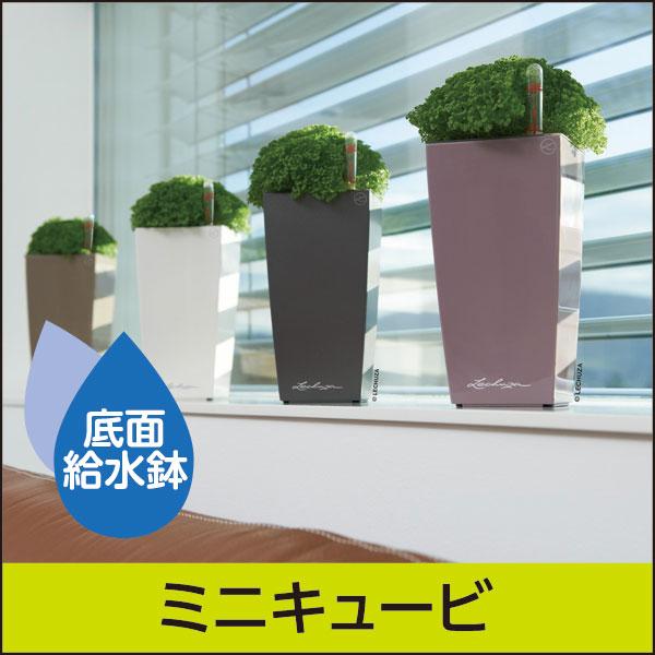 底面給水機能付きプランター【レチューザプレミアム】ミニキュービ・LECHUZA・プラスチック製