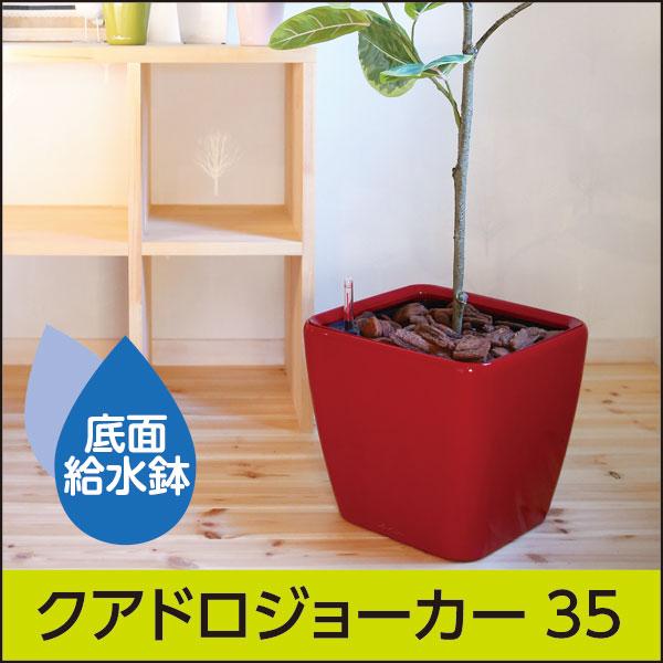 5/9迄☆8%OFFSALE☆底面給水機能付きプランター【レチューザプレミアム】クアドロ・ジョーカー35・LECHUZA・プラスチック製