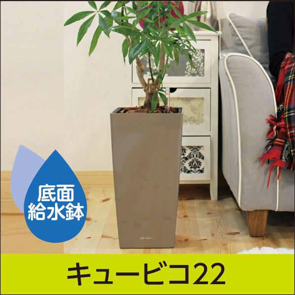 底面給水機能付きプランター【レチューザプレミアム】キュービコ22・LECHUZA・プラスチック製