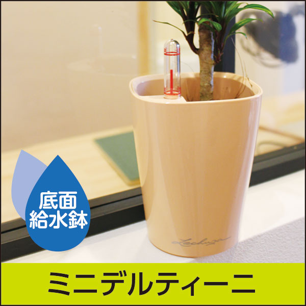 底面給水機能付きプランター【レチューザプレミアム】ミニデルティーニ・LECHUZA・プラスチック製