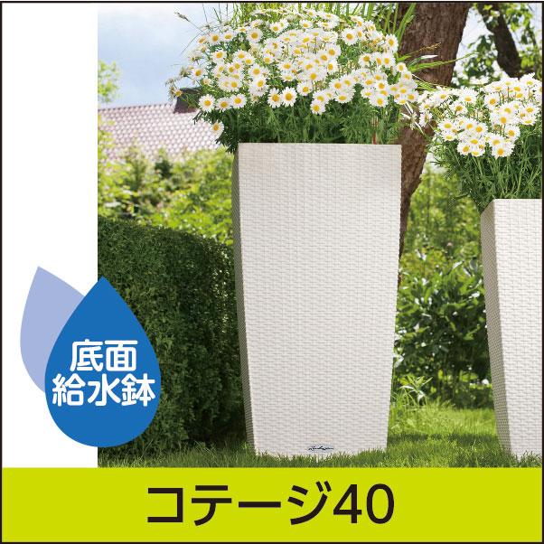 ☆送料無料☆底面給水機能付きプランター【レチューザエコノミー】コテージ40・LECHUZA・プラスチック製