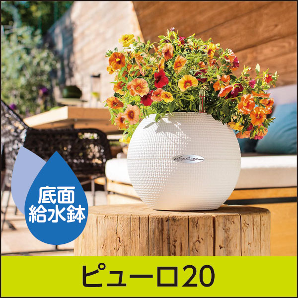 le6120-smp01-02