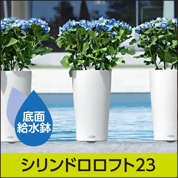 ★底面給水機能付きプランター【レチューザエコノミー】シリンドロロフト23・LECHUZA・プラスチック製