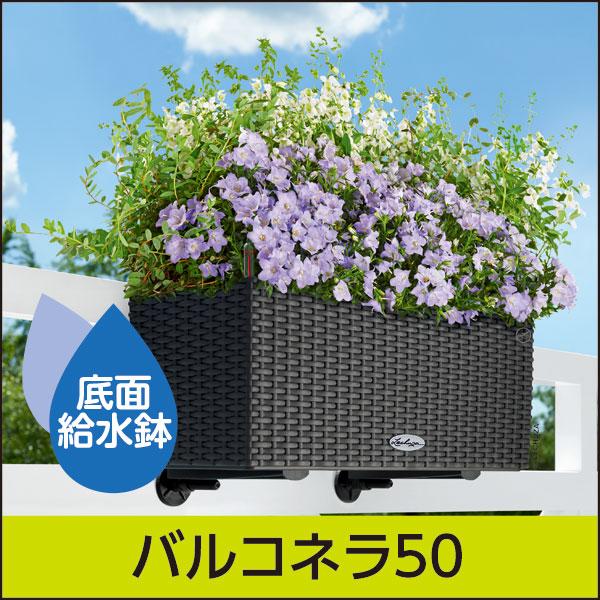底面給水機能付きプランター【レチューザエコノミー】バルコネラ50・LECHUZA・プラスチック製