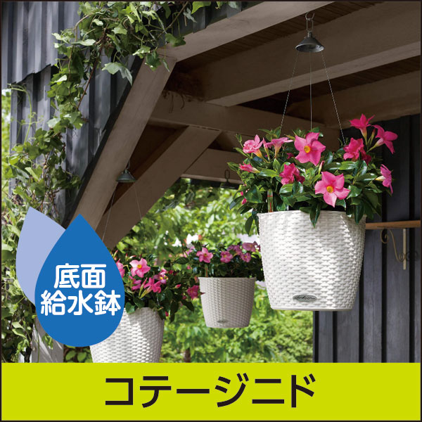 底面給水機能付きプランター【レチューザエコノミー】コテージニド・LECHUZA・プラスチック製