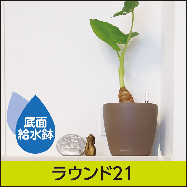 ☆送料無料☆底面給水機能付きプランター【レチューザエコノミー】ラウンド21・LECHUZA・プラスチック製