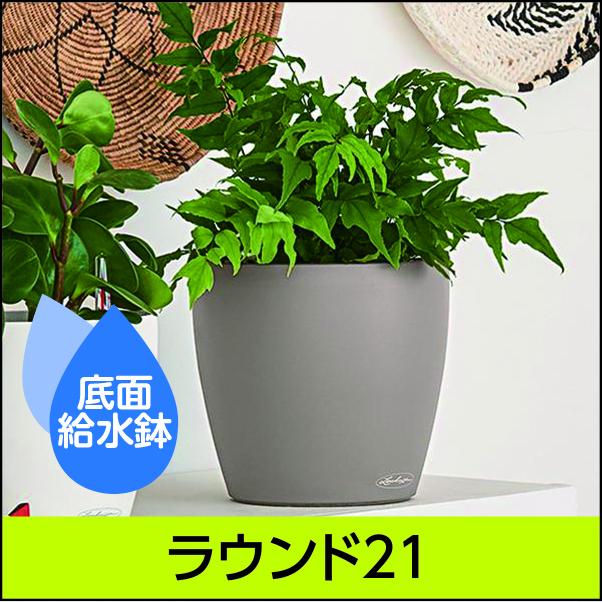 底面給水機能付きプランター【レチューザエコノミー】ラウンド21・LECHUZA・プラスチック製