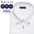 ワイシャツ[L.O.X] ボタンダウン ホワイトドビーチェック柄 形態安定 標準型 P12LOB241