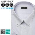 半袖ワイシャツ[L.O.X] ボタンダウン 吸水速乾 ビッグサイズ ラベンダー 形態安定 標準型 P16LOB062