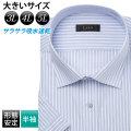 半袖ワイシャツ[L.O.X] ワイドスプレッド 吸水速乾 ビッグサイズ ブルーストライプ 形態安定 標準型 P16LOW011
