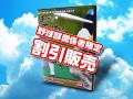 高校野球広島大会2015DVD(割引販売)